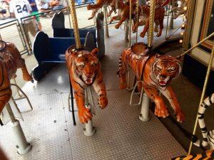 ride-em-tiger